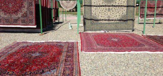 nimble_asset_alvand-carpet-cleaning7