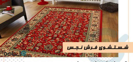 شستشوی فرش نجس